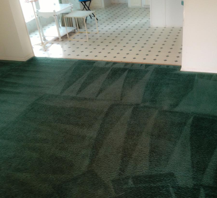 Upholstery Cleaning Service Near Atlanta Atlanta Carpet
